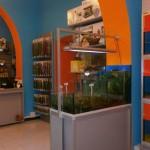 La bottega dell'acquario Genova (1)