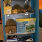 La bottega dell'acquario Genova (2)