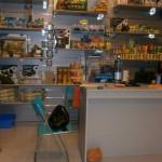 La bottega dell'acquario Genova (3)